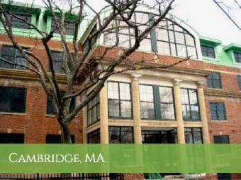 Cambridge lead remediation project