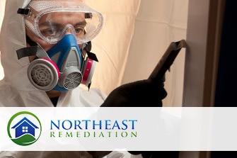 Remediation Professionals